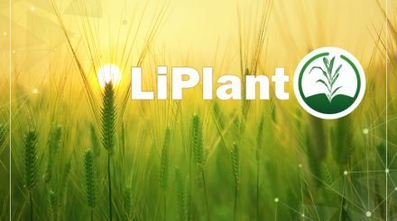 LiPlant 表型数据处理软件