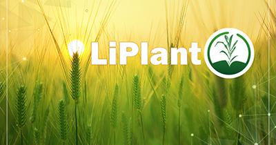 LiPlant